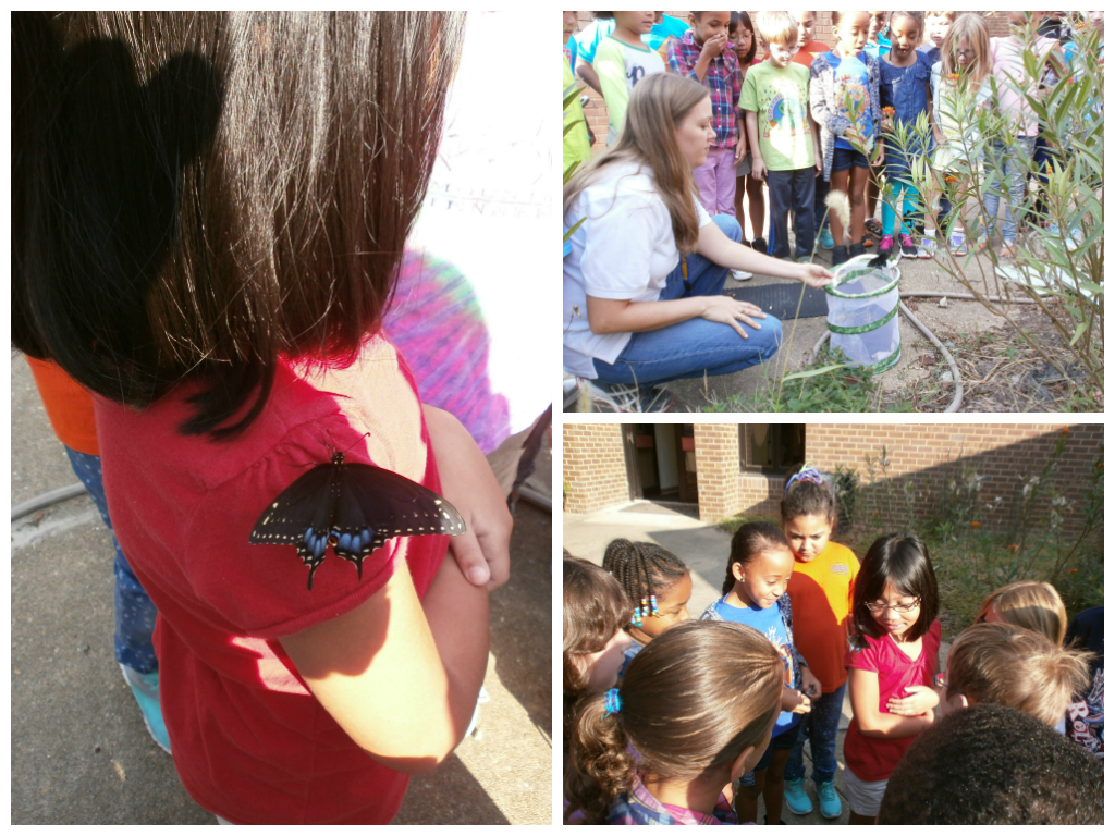 Students from Glenwood Elementary release their butterflies.