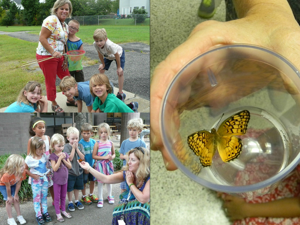 Students from Red Mill Elementary release their butterflies.