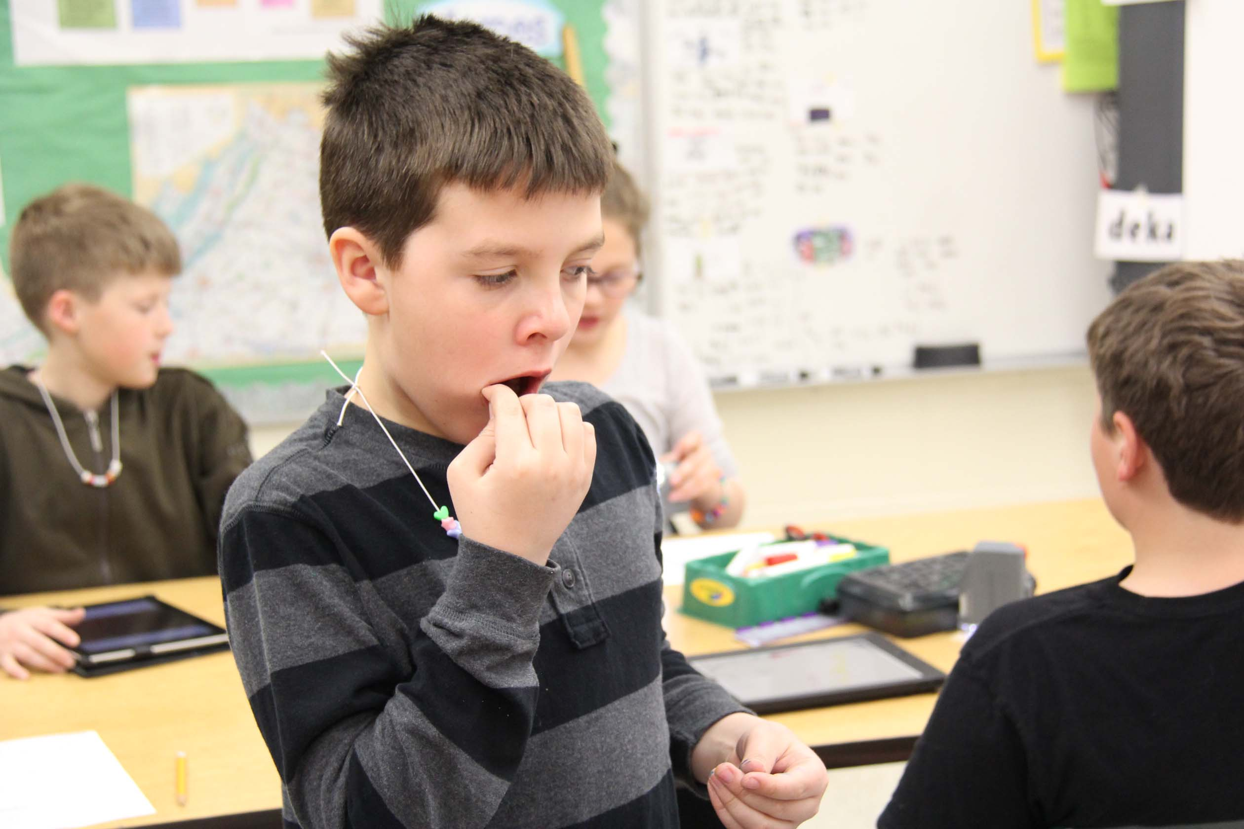 A student uses a toothpick to get cells from his inside his mouth.