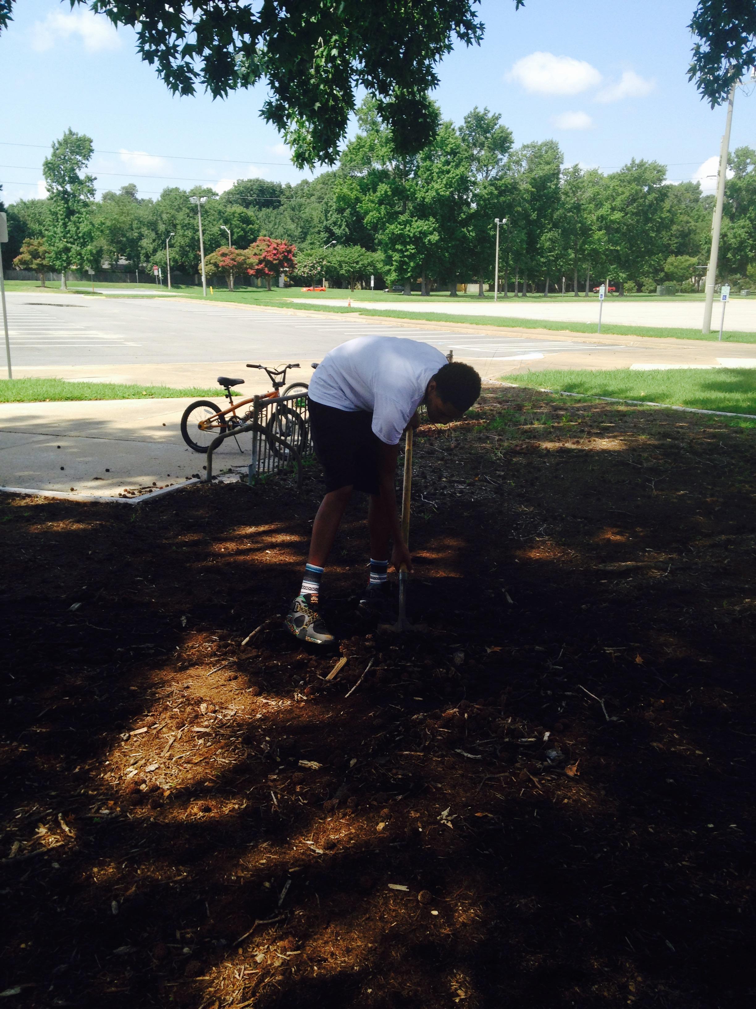 maza digging