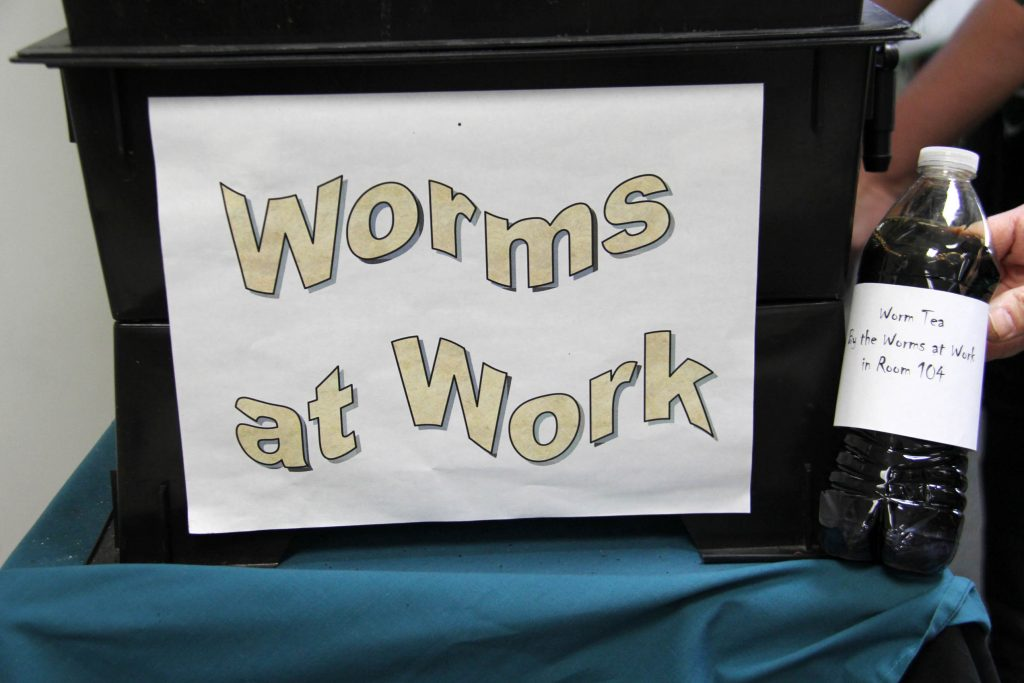 worm tea