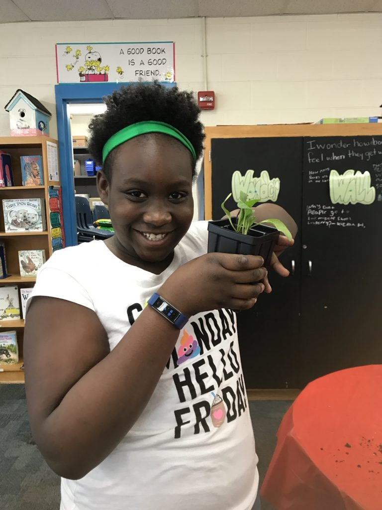 Rosemont Elementary School fourth-graders participated in a program called Growing Wetlands in a classroom sponsored by Lynnhaven River NOW.