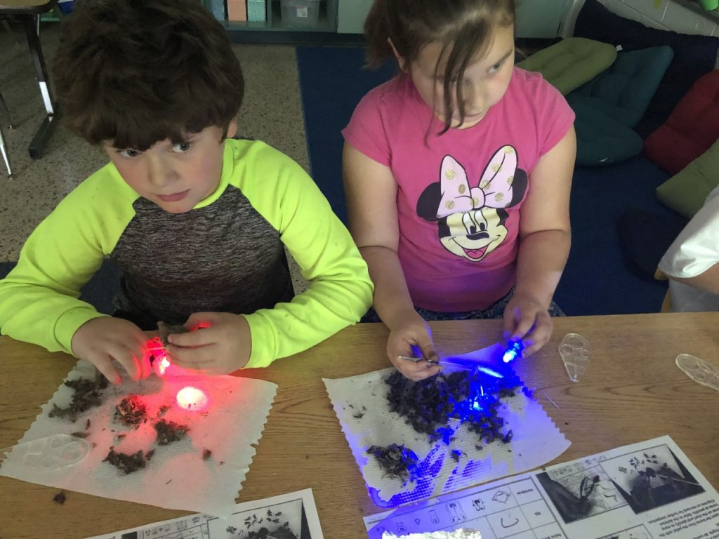 Even though the power was out, learning continued at Malibu Elementary. Emma McCormick and Jesse Scharin dissected an owl pellet.