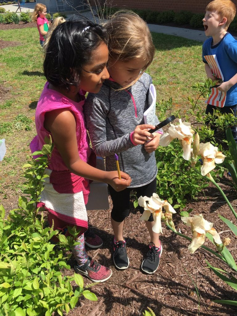 "Second graders at Old Donation School made use of their ""outdoor classroom"" to expand their knowledge of systems of nature by using magnifying glasses, observation skills, and note-taking."