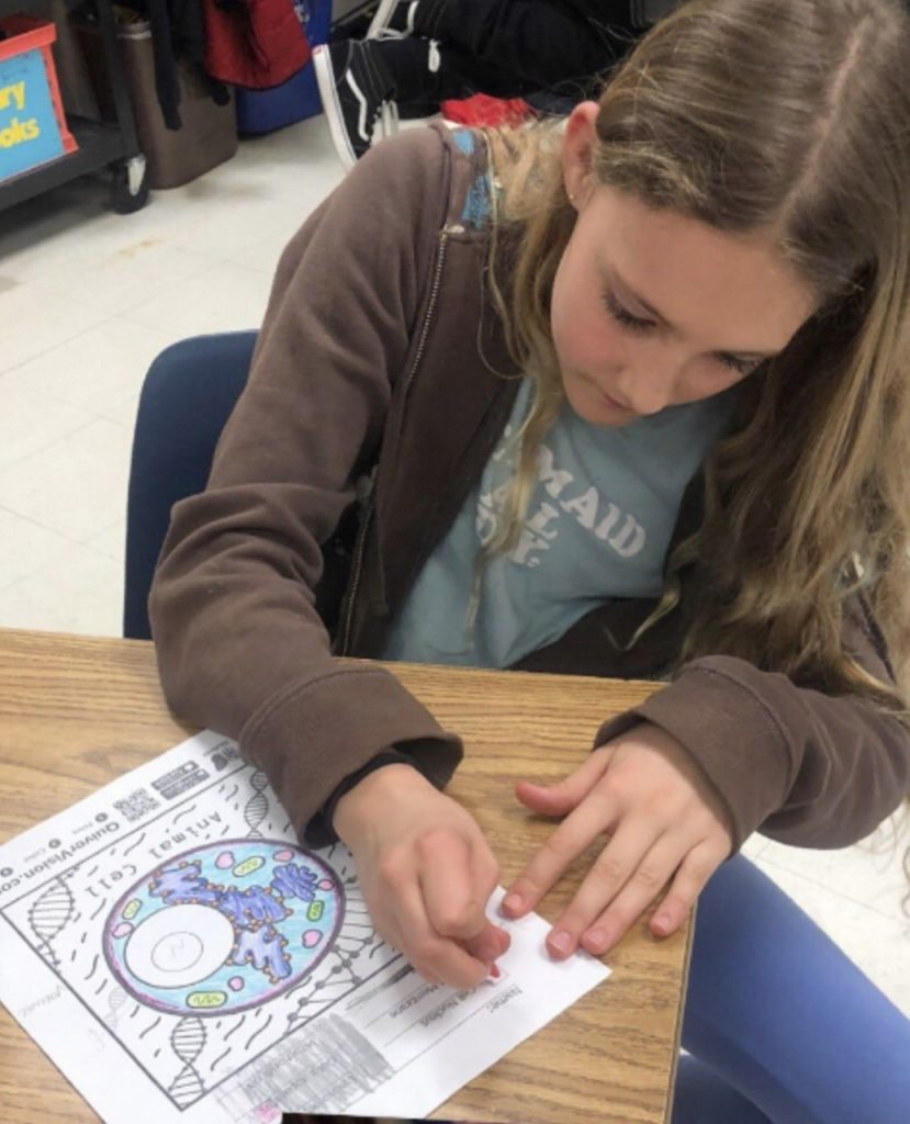 "Linkhorn Park Elementary School fifth graders 5th graders used Quiver Vision to help bring plant and animal cells ""to life"" through 3D augmented reality."