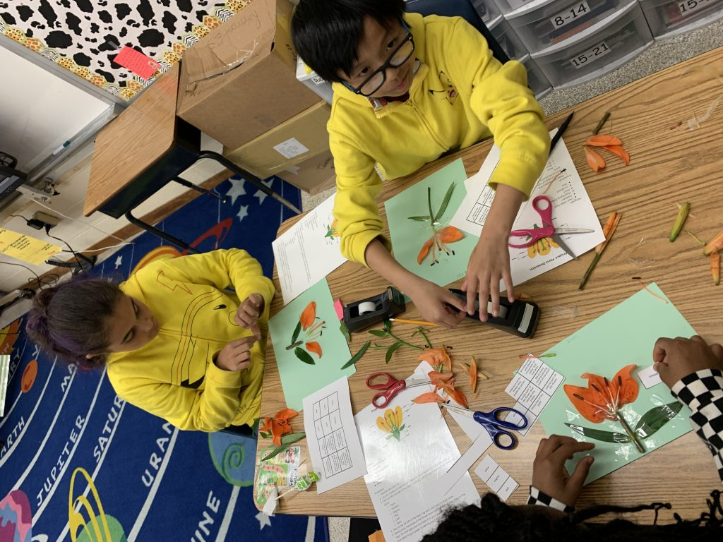 In preparation for the fifth grade Science SOL, Rosemont Elementary students got creative reviewing the parts of a plant.