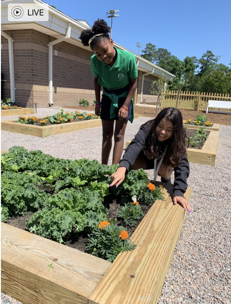 Maliah Merton and Lynzy Hernandez worked together by pulling weeds in the school's community garden at Seatack Elementary An Achievable Dream Academy.
